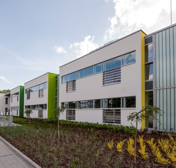 Center for International Education